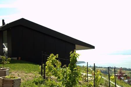 Panorama unique sur le Lac Léman - Mont-sur-Rolle - Pensió