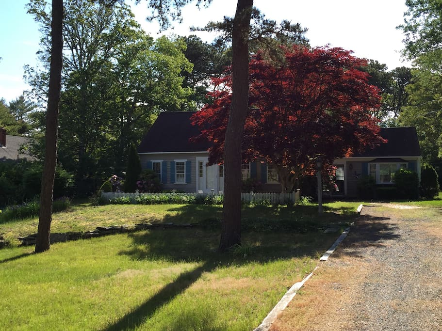 Large front yard with several trees and set back from the road for privacy.