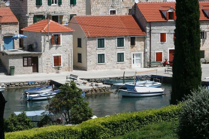 Apartman Jele - Maslinica - House