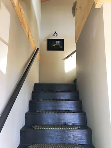 BRAND NEW, JUST BUILT! The Bird's Nest - Fairview - House