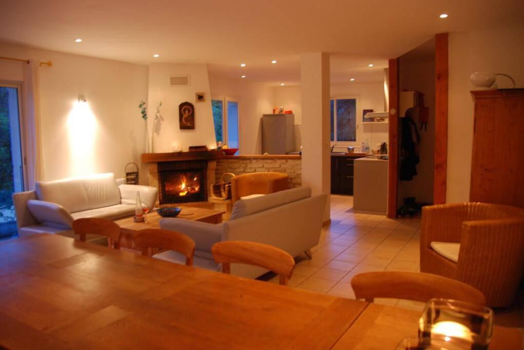 Ruime woonkamer met open keuken en openhaard.