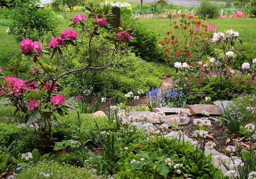 Terraced garden beside house in spring