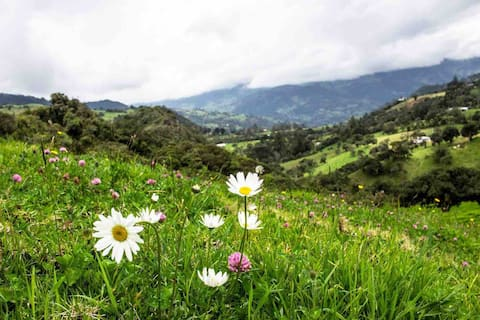 Escapada Romantica en medio de las montañas