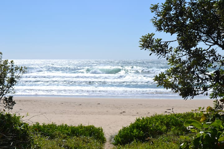 Beach Side. - Sawtell - Pis