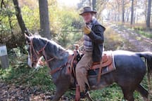 Paarden rit bossen