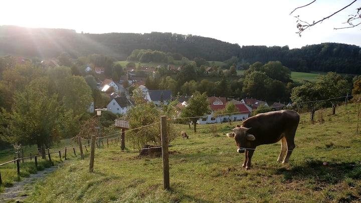 Gemütliche Wohnung in Wolfegg - das Tor zum Allgäu