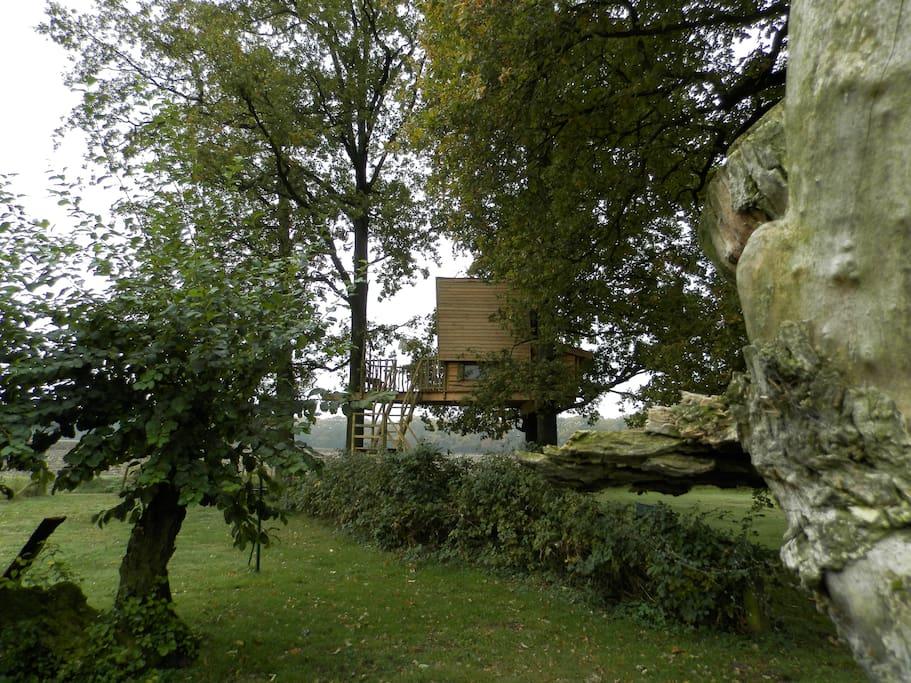 de boomhut gaat mooi op de omliggende natuur.