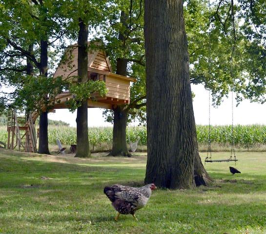 boomhut - Haarlo - Treehouse