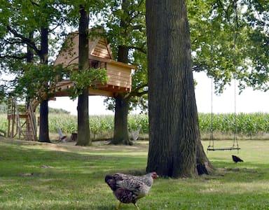 boomhut - Haarlo - Dům na stromě