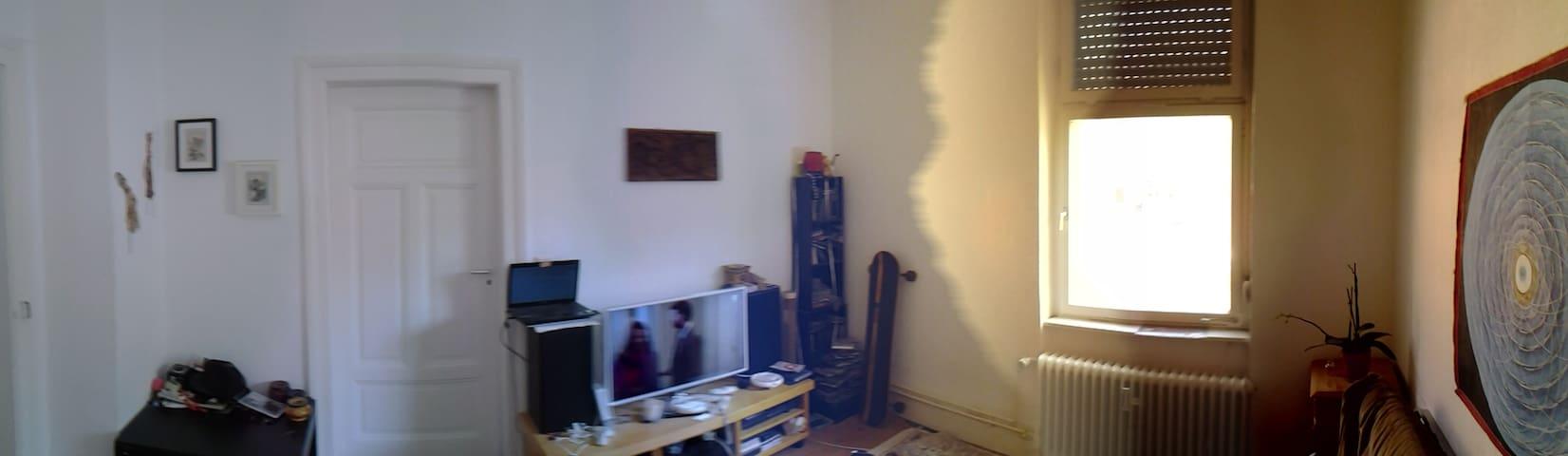 altbau im hinterhof - Freiburg im Breisgau - Apartment