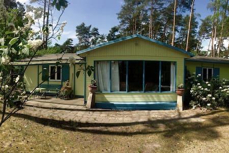 Liebenswertes Ferienhaus in Seenähe - Bad Saarow - Ház