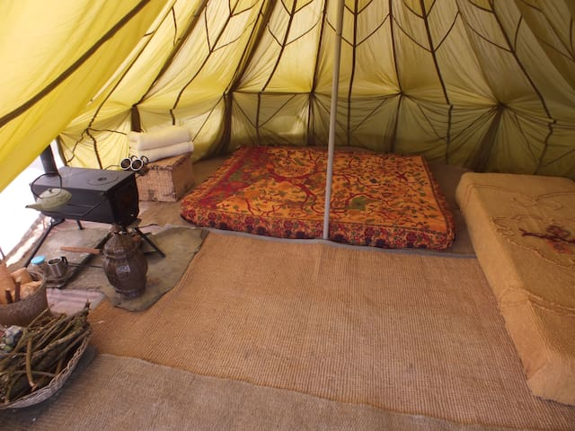 Wheems Bell Tent Dandelion