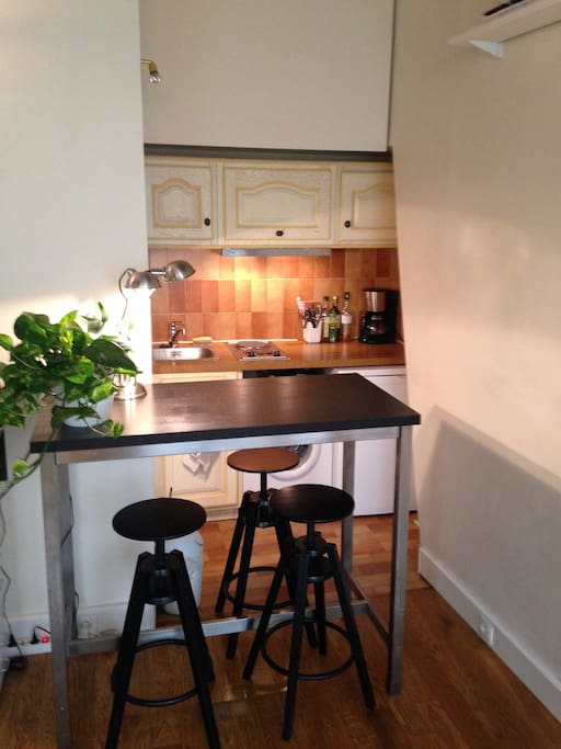 Internet, cable TV, washing machine, fully equiped kitchen.