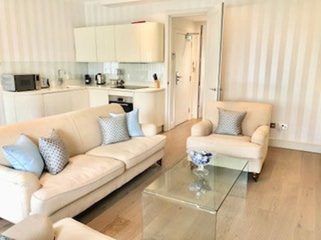Contempory 1 bedroom flat in Chelsea