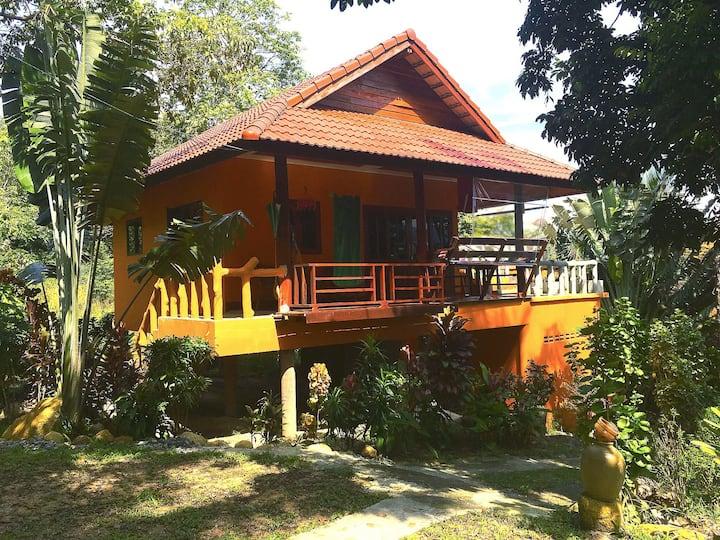 The Hill Village, Baan Din, Koh Phangan, TNP