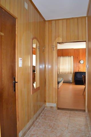 Apartmani Smiljanic - Sokobanja - Wohnung