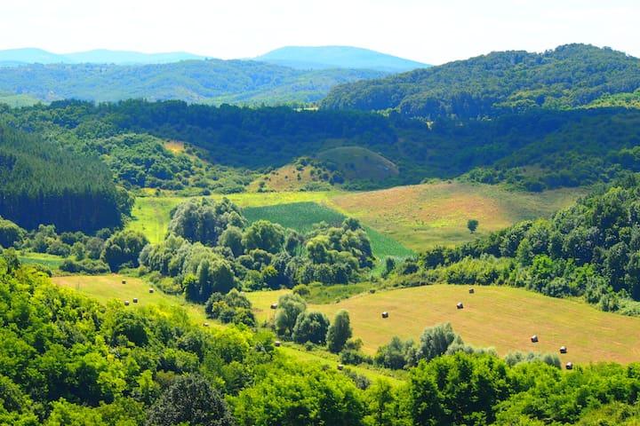 Szép természeti környezet - Szécsény / Benczúrfalva - Haus