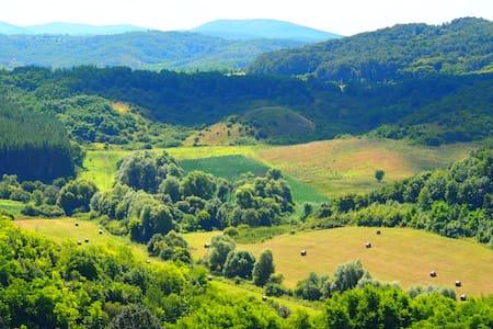 Szép természeti környezet - Szécsény / Benczúrfalva
