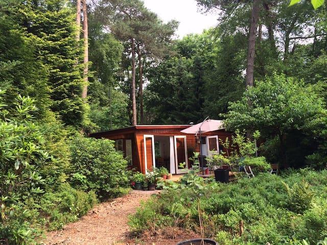 Idylic forest house Veluwe - Beekbergen - Alpstuga