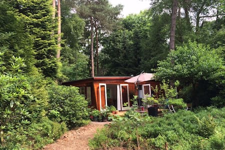 Idylic forest house Veluwe - Beekbergen - Chalet