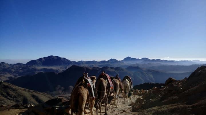 Camping et méditation dans le désert  yoga tai-chi