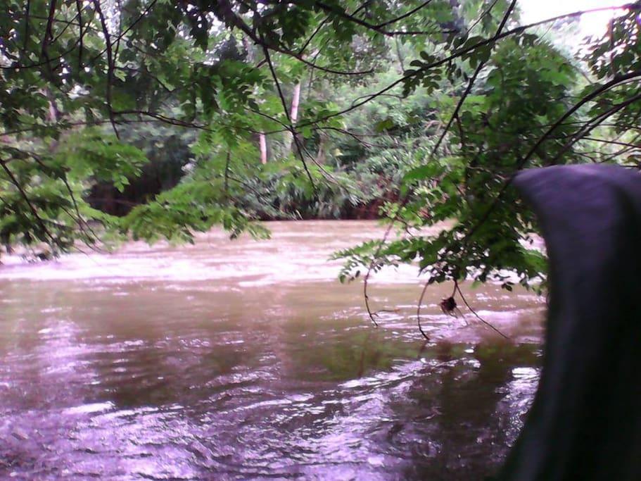 "River ""Sudu Ganga"""
