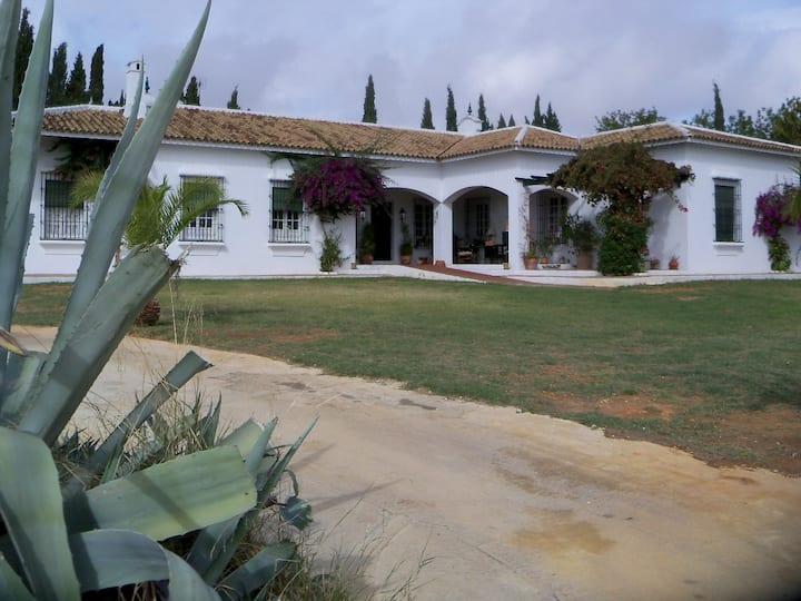 Habitación en Hacienda Andaluza nº  1