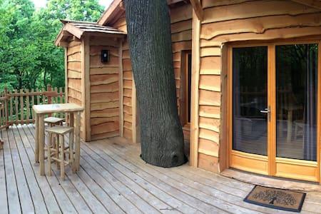 Cabane dans les arbres Cime - Raray