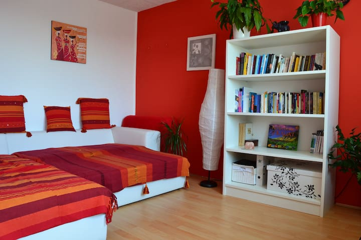 Colorful penthouse + free bike&P - Ljubljana - Apartment
