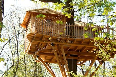 Cabane dans les Arbres Escapade - Raray - 树屋