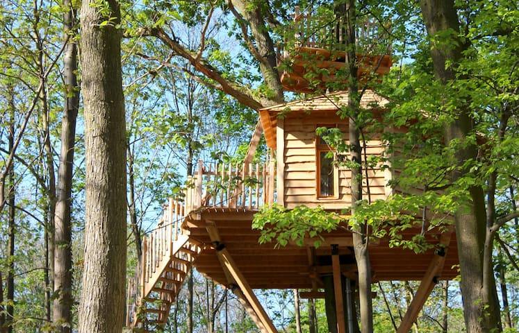 Cabane dans les Arbres Canopée - Raray - Treehouse