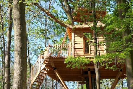 Cabane dans les Arbres Canopée - Raray - 树屋