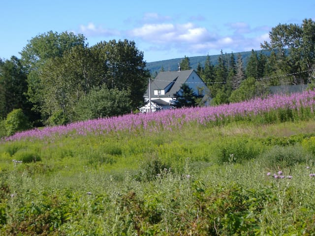 FIREFLY ACRES (3 min fr CABOT TRAIL) - Baddeck - 一軒家