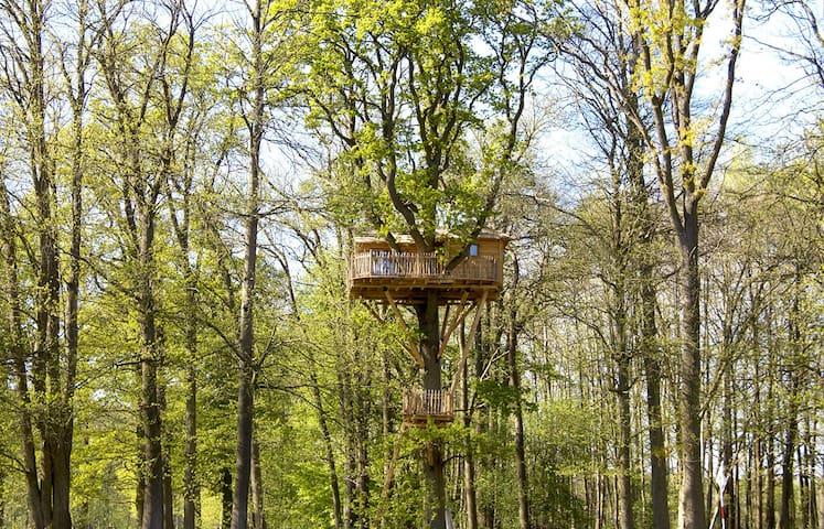 Cabane dans les arbres Imprenable - Raray - Treehouse