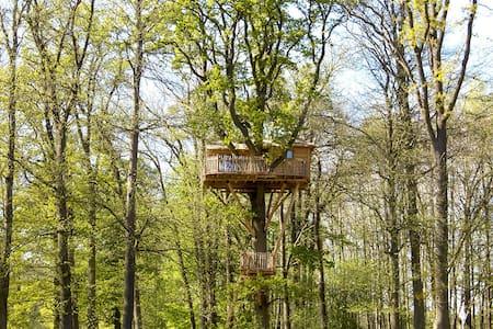 Cabane dans les arbres Imprenable - Raray - Boomhut