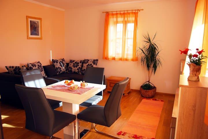 Lovely One Bedroom Flat in Zrnovo