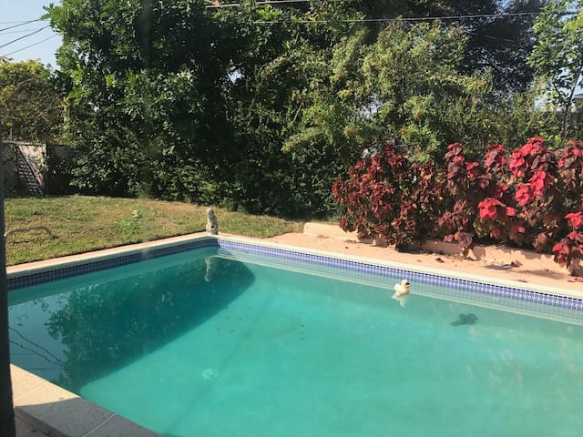 2 BD Private Bath with Swimming pool - Miami - House