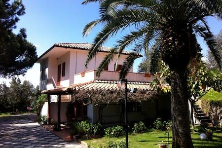 Azienda Pollidoro - Stella Marina - Sellia Marina - Apartemen