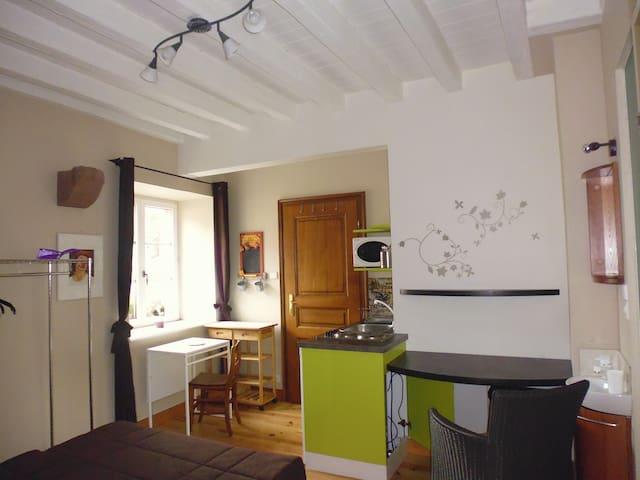 Joli studio 16 m2 - Guémar - Casa