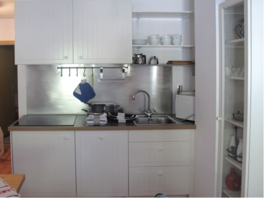 Small and easy to clean kitchen