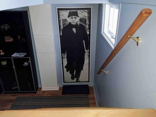 Le petit Einstein, demi sous-sol