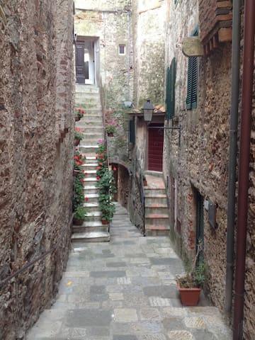 "La ""casa degli uccelli"" a Capalbio - Capalbio - Leilighet"