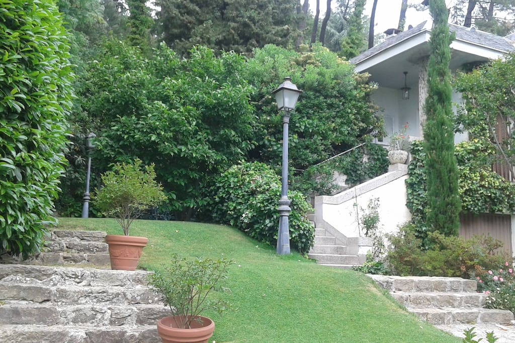 La parte delantera del jardin es de cesped. Detras hay una zona de monte.