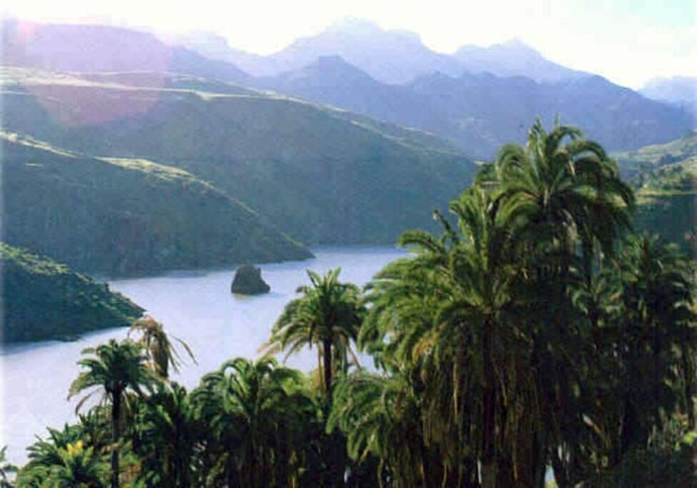 Presa de Gran Canaria