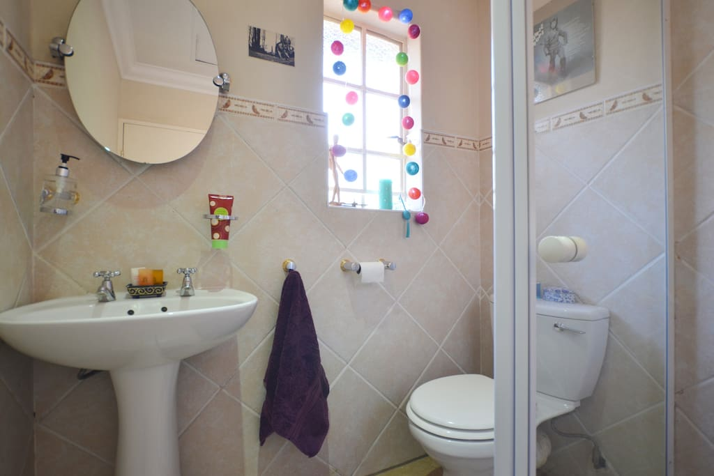 Own toilet and shower