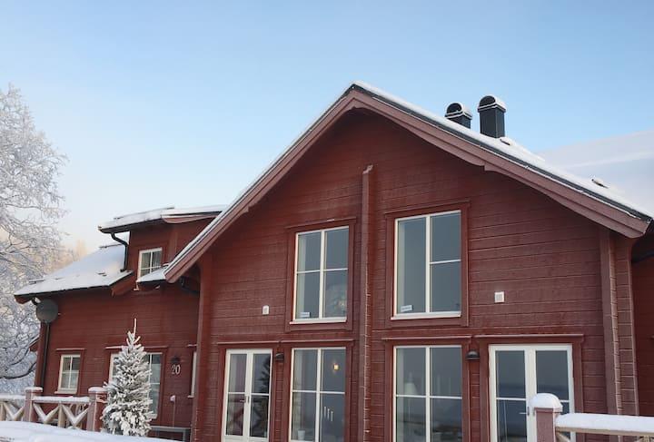 Modern ski-cabin Åre Björnen