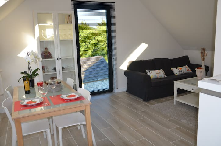 Nice furnished and equipped flat - Huy - Lägenhet