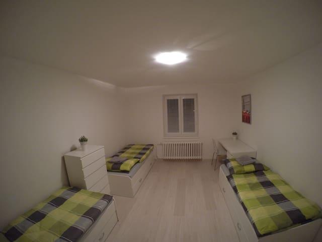 Comfortable room in the centre of Ostrava - Ostrava - Lejlighed