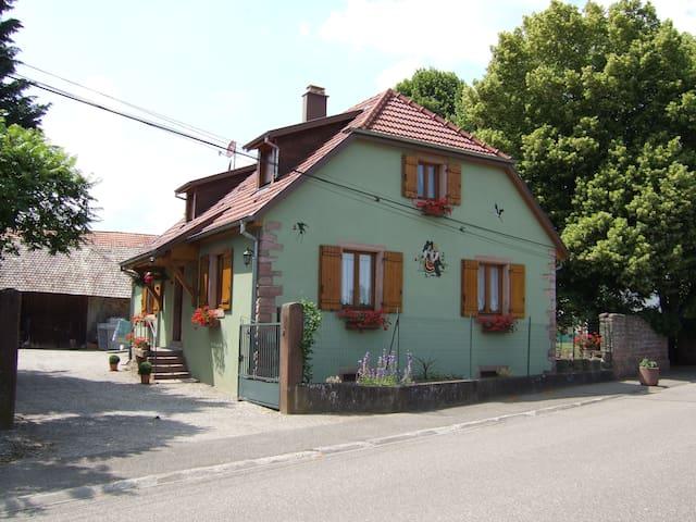 Maison- Gîte - Issenheim - Dům