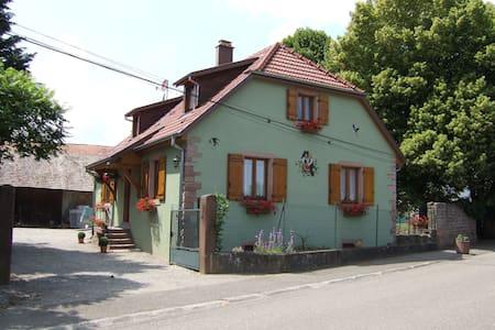 Maison- Gîte - Issenheim - House